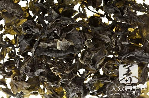 黑豆和海带能一起吃吗