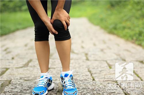 膝盖的组成