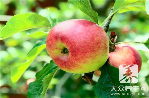 胃寒能吃苹果吗