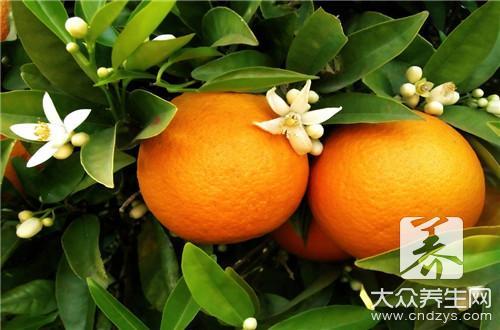 橘子减肥吗